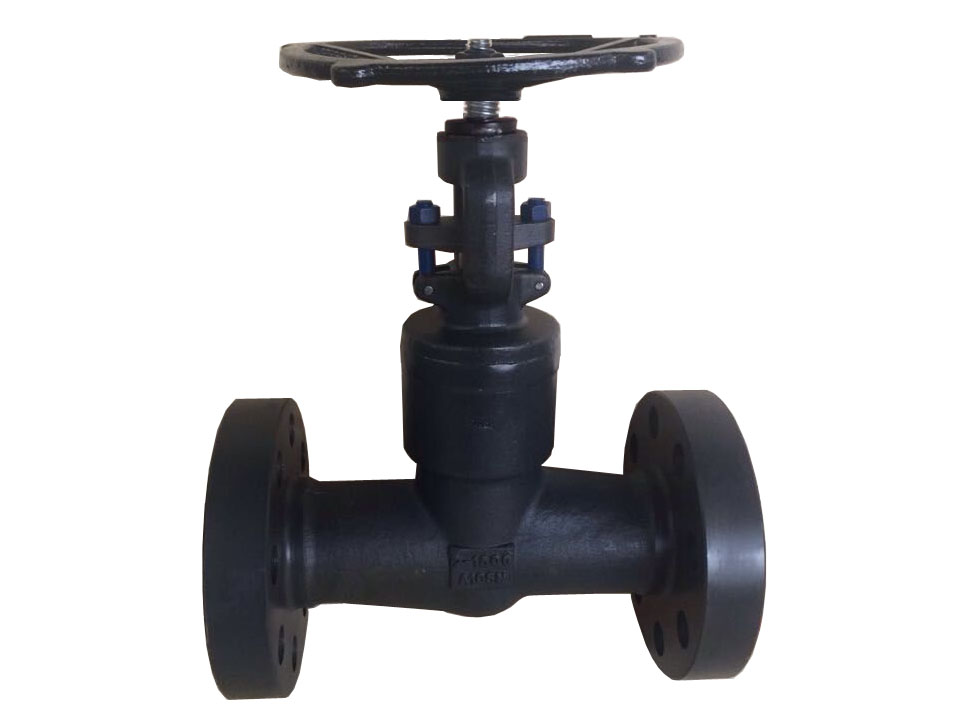 Integral Flanged Globe Valve - Welded Bonnet - 1500LB