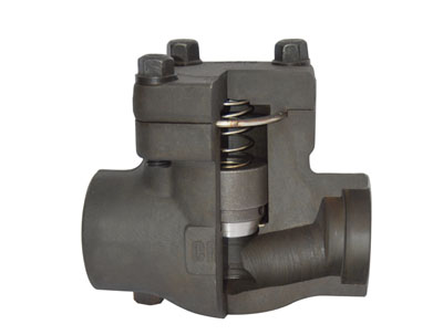 Piston Check Valve Anatomy Image
